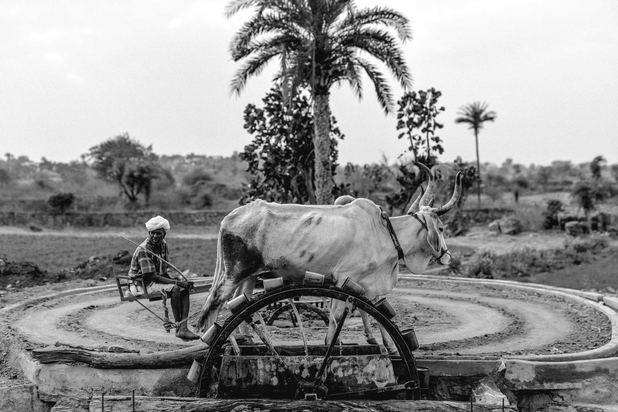 India_Travel_2018_Ilsoo_van_Dijk_-7132